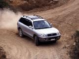 Hyundai Santa Fe (SM) 2000–04 pictures