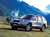 Hyundai Santa Fe (SM) 2000–04 photos