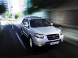 Hyundai Santa Fe (CM) 2005–09 images