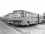 Ikarus 280 1973–2000 images