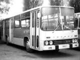 Images of Ikarus 242 1969–70