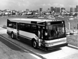 Photos of Ikarus 416 1989–92