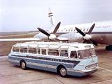 Ikarus 55 1959–72 images