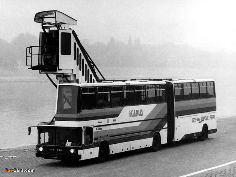 Images of Ikarus 695 1985 (800 x 600)