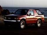 Pictures of Isuzu Amigo XS (TC) 1993–94