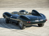 Jaguar D-Type 1954 pictures