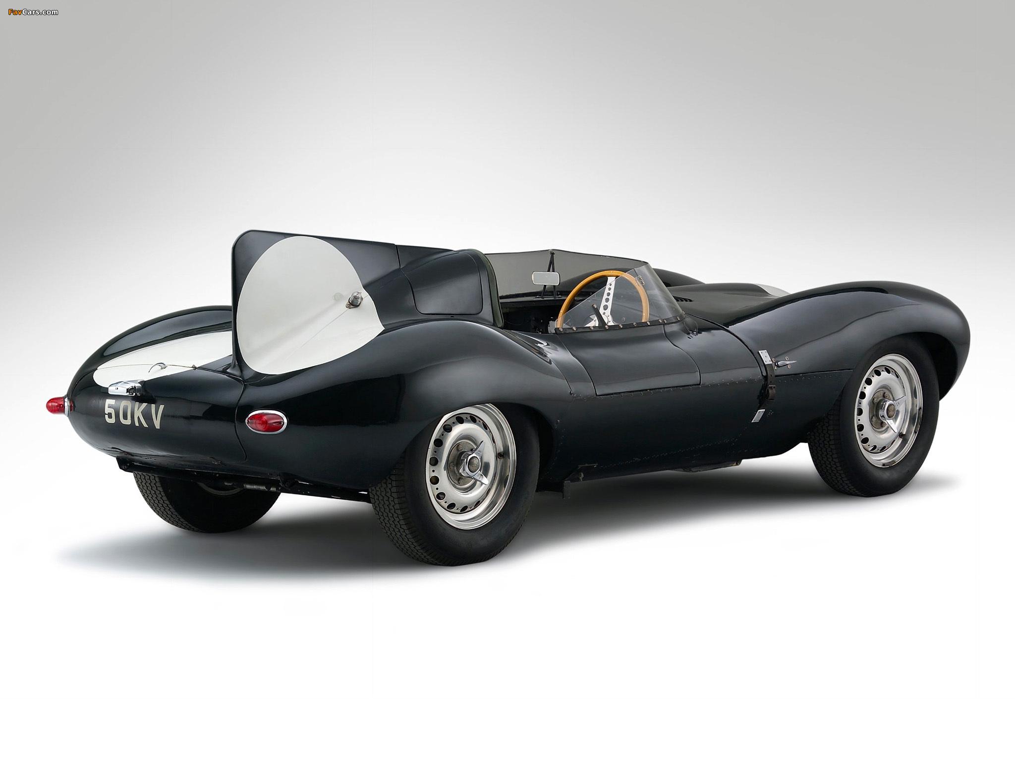 Jaguar D-Type 1955-57 images (2048x1536)