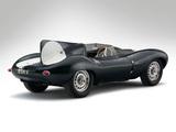 Jaguar D-Type 1955–57 images