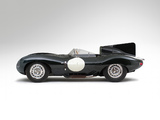 Jaguar D-Type 1955–57 photos