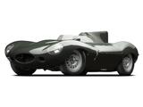 Jaguar D-Type 1955–57 pictures