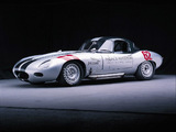 Jaguar Select Edition Racing E-Type Roadster pictures