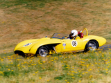 Pictures of Old Yeller (MkVIII) 1961