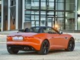 Jaguar F-Type V8 S ZA-spec 2013 wallpapers