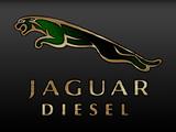Pictures of Jaguar
