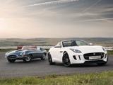 Photos of Jaguar