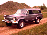 Images of Jeep Cherokee Chief (SJ) 1975–78