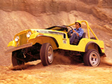 Jeep CJ-5 Renegade II 1971 pictures