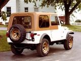 Jeep CJ-7 Golden Eagle 1976–79 pictures