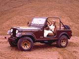 Jeep CJ-7 Golden Eagle 1978 pictures