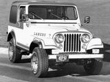 Jeep CJ-7 Laredo 1980–86 photos