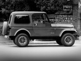 Jeep CJ-7 Limited 1982 photos
