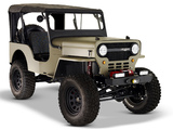 ICON Jeep CJ-3B 2010 pictures