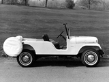 Pictures of Jeep Tuxedo Park Mark IV 1966