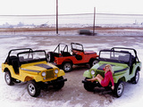 Pictures of Jeep CJ-5 Renegade II 1971