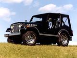 Jeep CJ-5 Laredo 1980–82 wallpapers