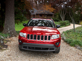 Images of Jeep Compass 2010