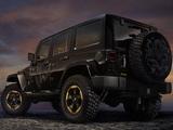 Jeep Wrangler Dragon Concept (JK) 2012 pictures