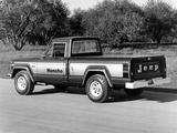 Photos of Jeep J10 Honcho 1976–78