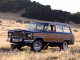 Jeep Wagoneer Limited 1982–83 pictures