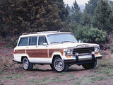 Jeep Grand Wagoneer 1987–91 photos