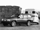 Jeep Grand Wagoneer (ZJ) 1993 pictures