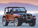 Images of Xenon Jeep Wrangler WW (TJ) 1997–2006