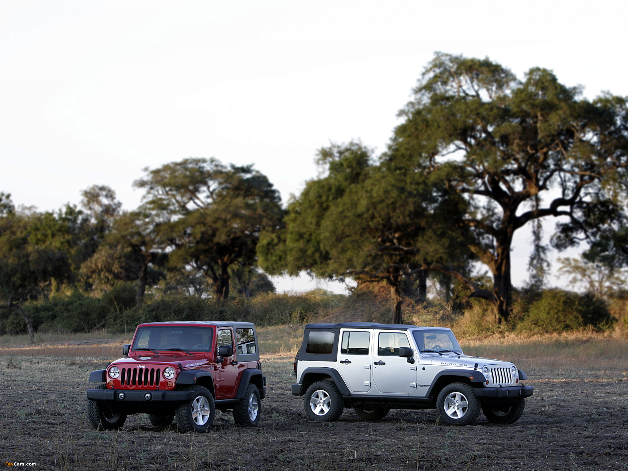 Images of Jeep Wrangler (2048 x 1536)