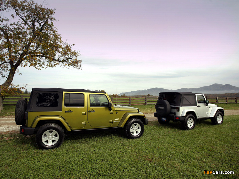 Images of Jeep Wrangler (800 x 600)
