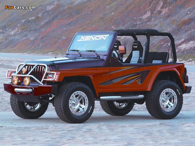Xenon Jeep Wrangler WW (TJ) 1997–2006 photos (640 x 480)