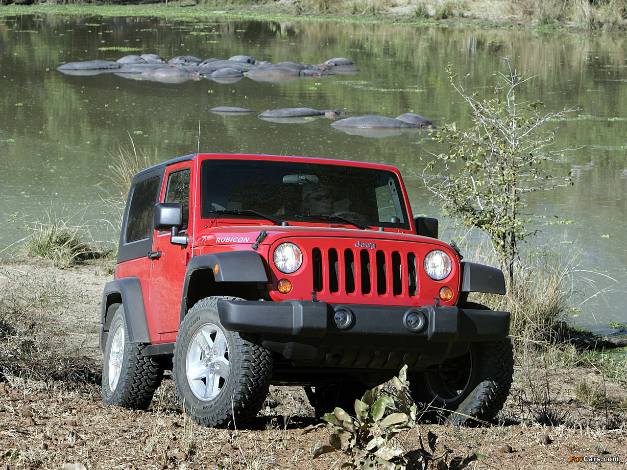 Jeep Wrangler Rubicon (JK) 2006–10 images (1280 x 960)
