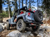 Jeep Wrangler Rubicon 10th Anniversary (JK) 2013 photos
