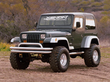 Pictures of Xenon Jeep Wrangler (YJ) 1987–95