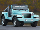 Pictures of Xenon Jeep Wrangler WW (TJ) 1997–2006