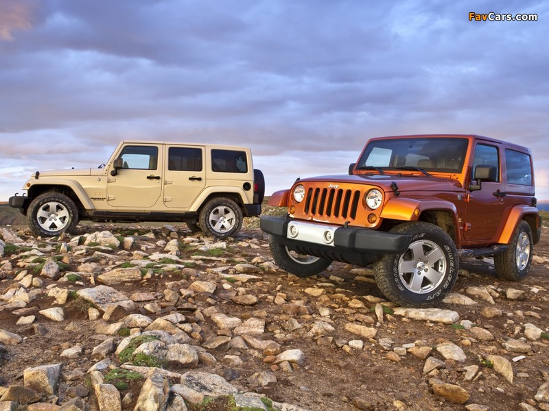 Pictures of Jeep Wrangler (800 x 600)
