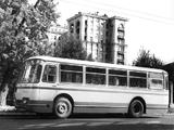 3100   (I) 1963 photos