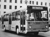 52561  1984 photos