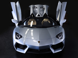 Lamborghini Aventador LP 700-4 Roadster (LB834) 2013 photos