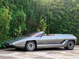 Lamborghini Athon Speedster Concept 1980 wallpapers