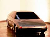 Lamborghini Marco Polo Concept 1982 pictures