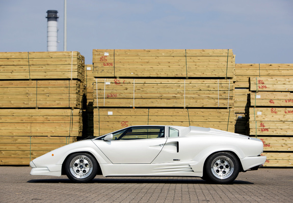 lamborghini countach 25th anniversary uk spec 1988 90 images. Black Bedroom Furniture Sets. Home Design Ideas